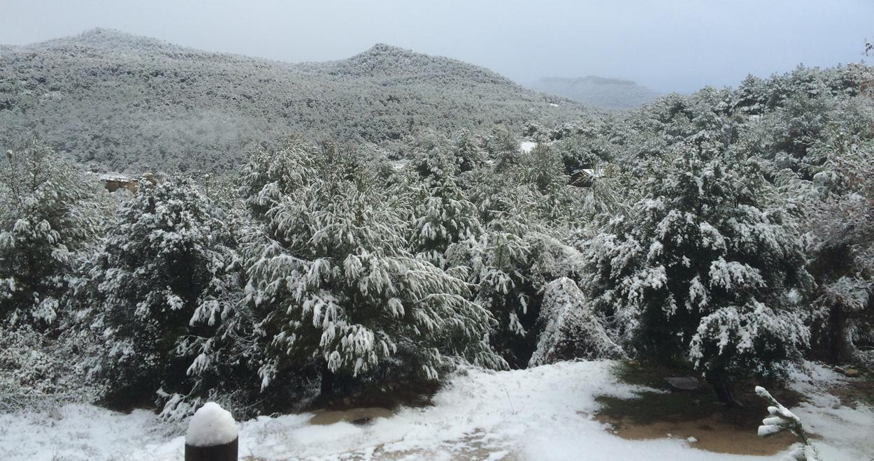 Schnee in Siruana, Spanien