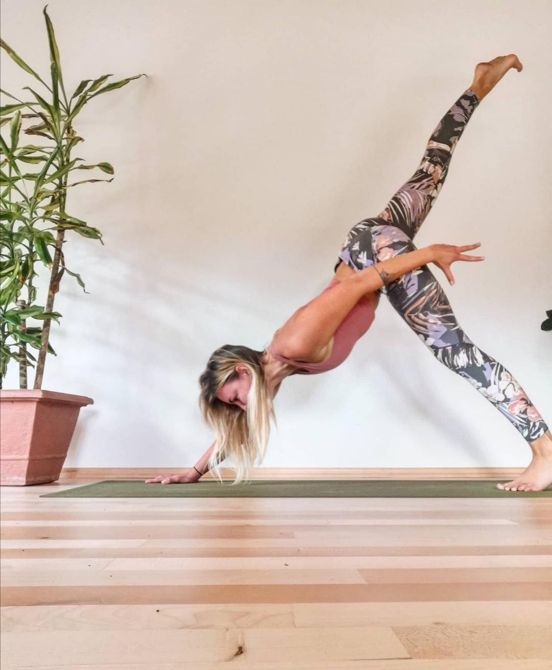 Downdog balance Tamara Lohr