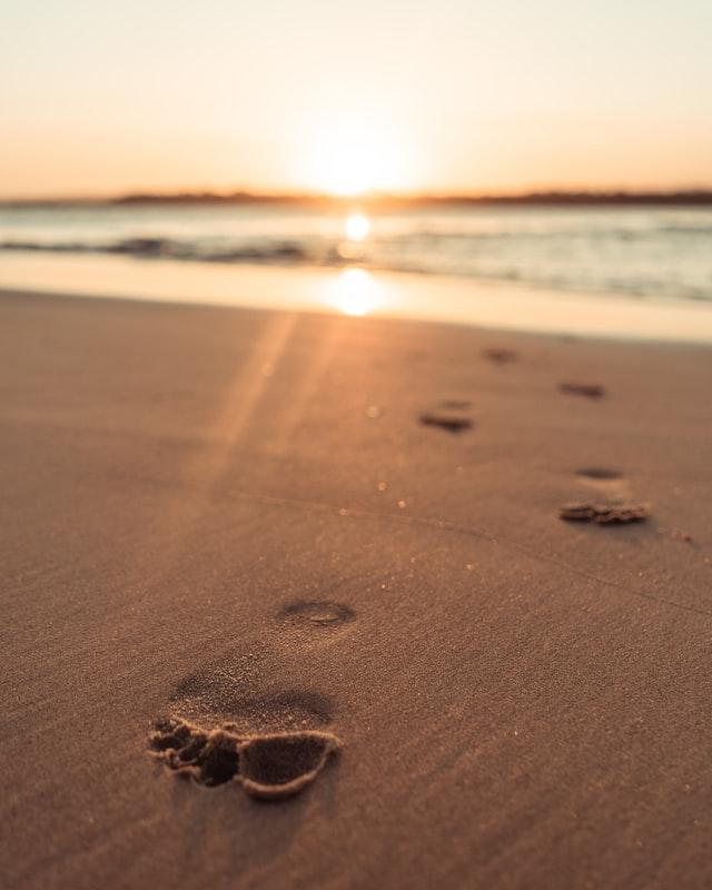 nachhaltige Fußabdrücke durch Cork Collect