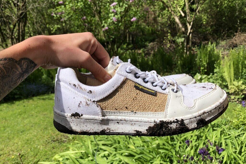 Sneaker reinigen