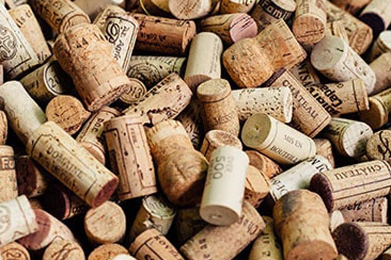 cork-collect-korkensammeln