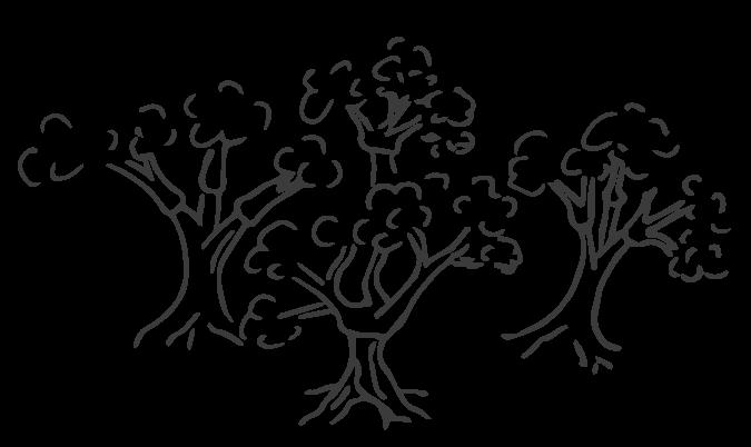 media/image/korkwald-nachhaltige-korkschuhe.png